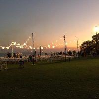Festoon & Lanterns Pee Wees